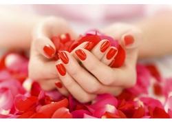 玫瑰花瓣和红色指甲油