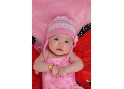 蝴蝶粉色宝宝