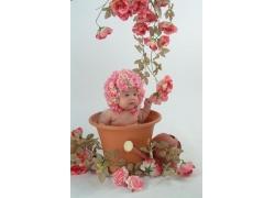 花盆里的乖乖小宝贝
