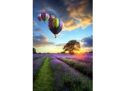 热气球与花园风景
