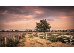 美丽花园围栏