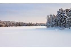 冬季雪景背景