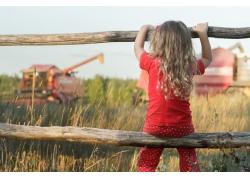 稻田围栏上的小女孩