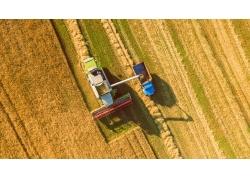 现代化稻田收割机