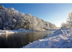 冬日小河树林雪景