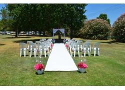 树林中草地上的婚礼现场