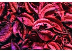 红色树叶背景