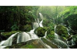 树林里的瀑布