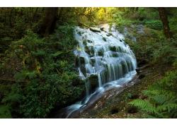 绿色里的瀑布