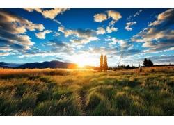 蓝天阳光草地风光