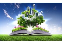 蓝天下的草地与书本