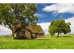 乡村草地上的房子