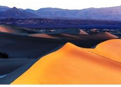 金色的沙漠沙丘风景