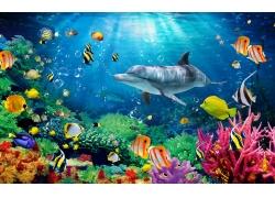 漂亮珊瑚鲨鱼背景墙