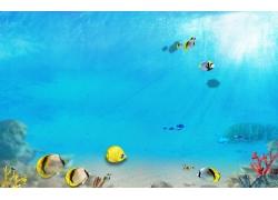 蓝色海洋海底背景墙