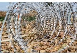 边境的圆形螺旋铁丝网