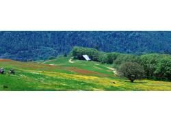 彩色山林美景