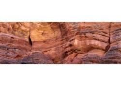 红岩林美景摄影