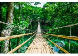 吊桥美景高清摄影