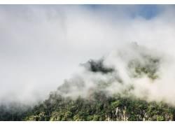 山林浓雾美景高清摄影