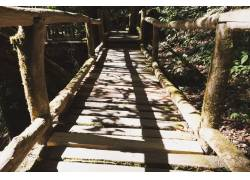阳光下的木栏高清摄影