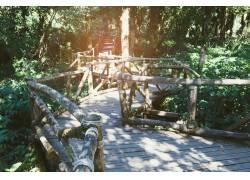 弯曲的木板道高清摄影