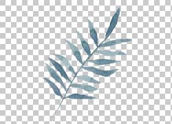 清新蓝色树叶
