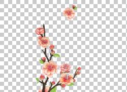 红色的美丽桃花图片