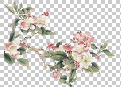 彩绘桃花设计图片