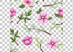 粉色桃花绿叶图片