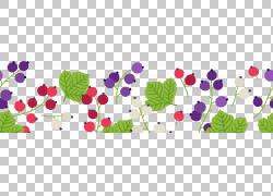 彩色树叶与果实