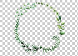 绿叶透明免抠素材