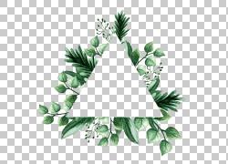 绿叶植物设计