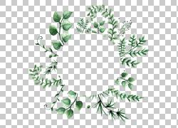绿色树叶植物背景