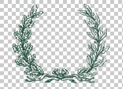 绿叶环绕边框素材