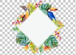 彩色叶子边框