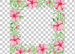 四周鲜花边框