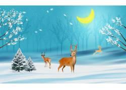 冬季麋鹿背景