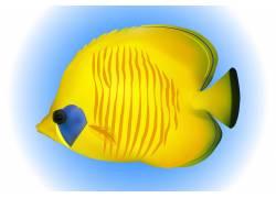 黄色热带鱼