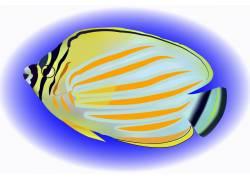 卡通海洋热带鱼