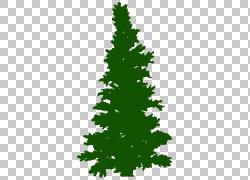 圣诞树杉木冷杉,树PNG clipart叶,分支机构,人造花,圣诞节装饰,草图片