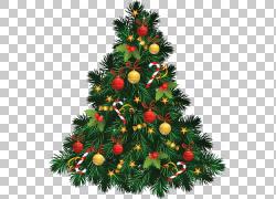 圣诞树,圣诞节冷杉木PNG clipart假期,装饰,圣诞节装饰,圣诞老人,图片