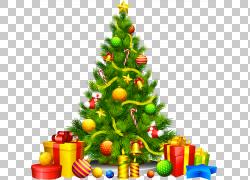 圣诞树,圣诞节冷杉木PNG clipart假期,装饰,演示文稿,圣诞节装饰,图片