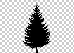松树冷杉,树PNG剪贴画叶,分支机构,单色,圣诞节装饰,树枝,剪影,云图片