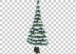 松树常绿冷杉,雪树PNG剪贴画圣诞节装饰,云杉,风暴,针叶树,圣诞节图片