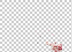 浪漫桃花节图片