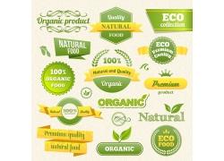 绿色环保标签素材