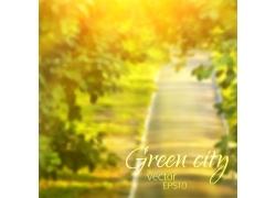 金色阳光树木背景