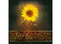 美丽向日葵与花纹