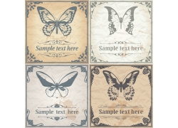 蝴蝶欧式花纹边框图片